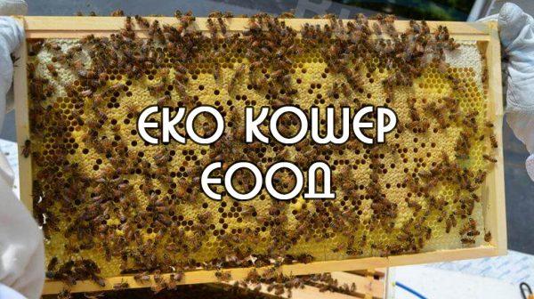 eko kosher EOOD